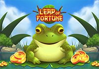 Leap Of Fortune